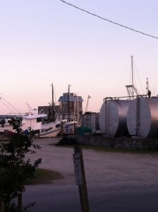 Shrimp boats and the facility on the harbor across from M&M's