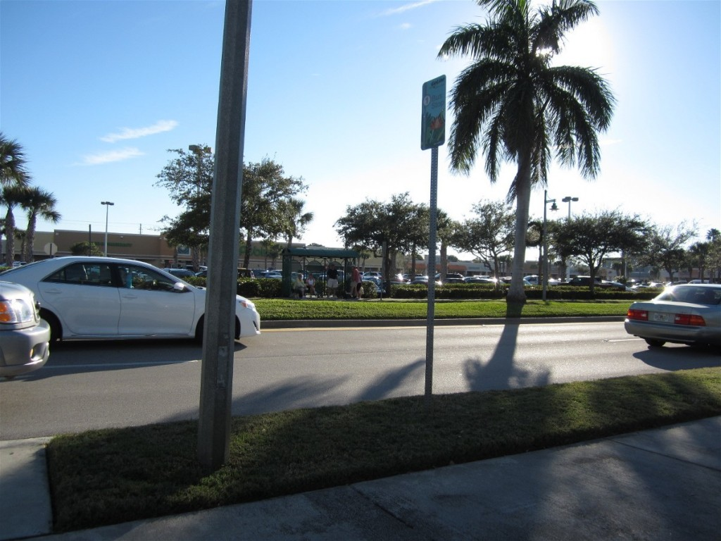Return bus stop is in front of Publix food store