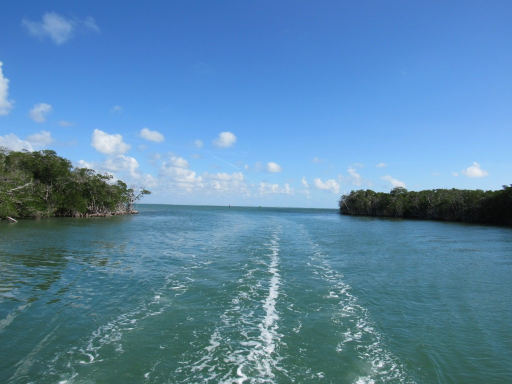 looking back to Jewfish creek entry at Key Largo