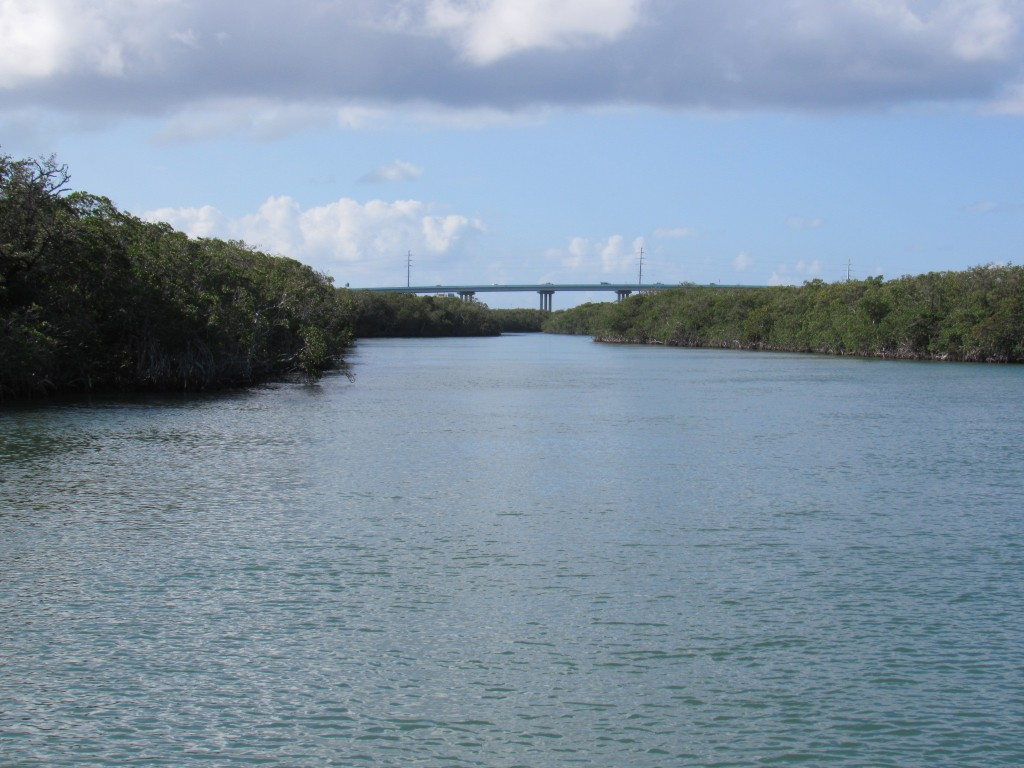 The Bridge at Gilbert's Resort is in the distance