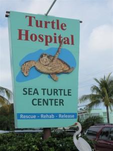 1 Hospital entrance