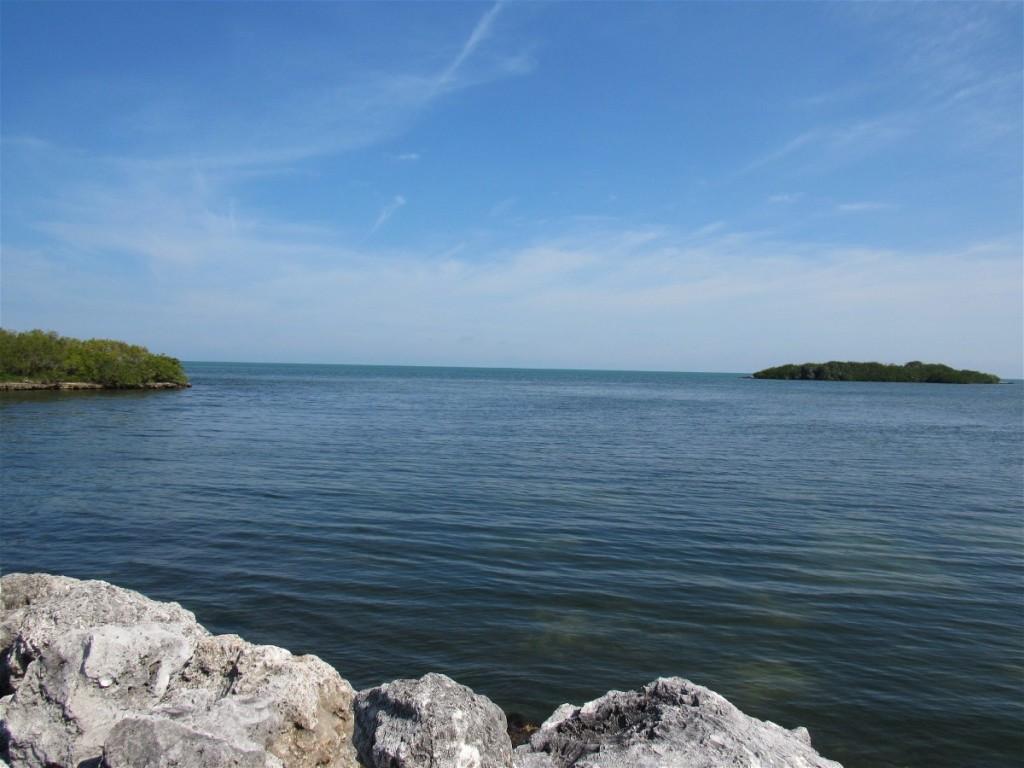 Crane's Bay View
