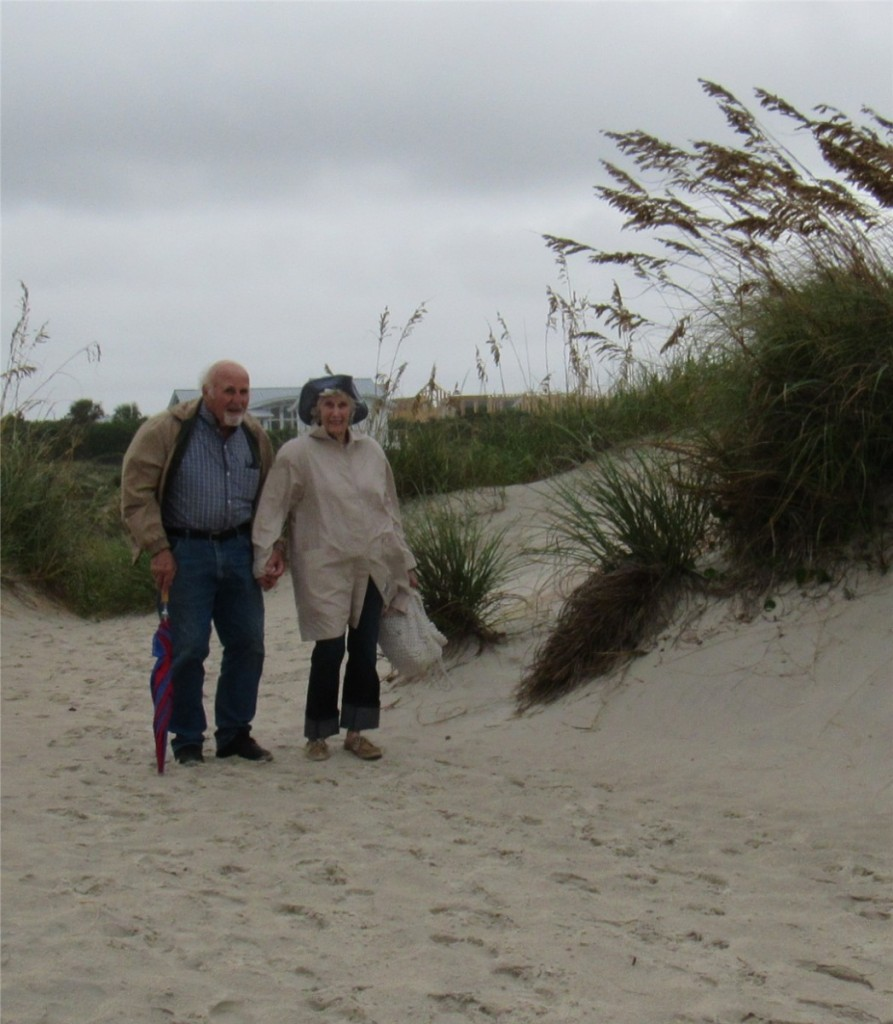 10 J&V dune